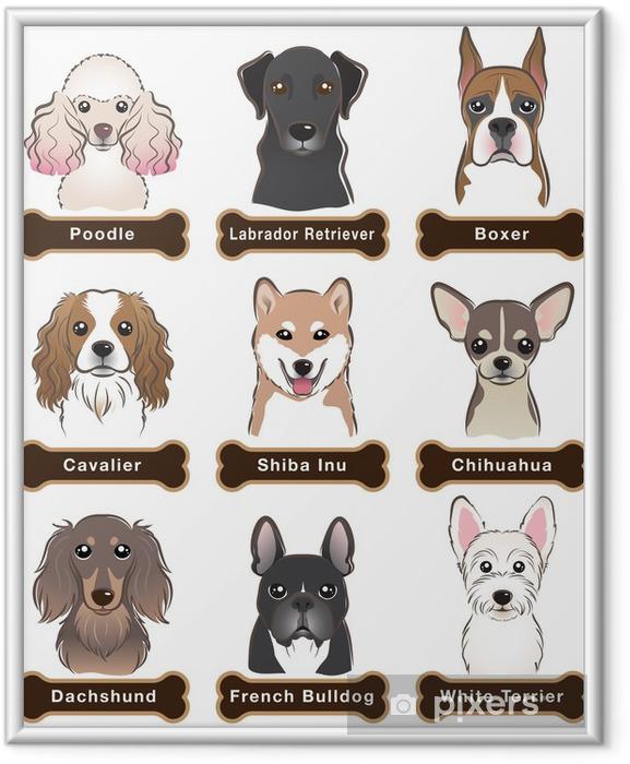 Plakat w ramie Pies / Tabliczka znamionowa - Tematy