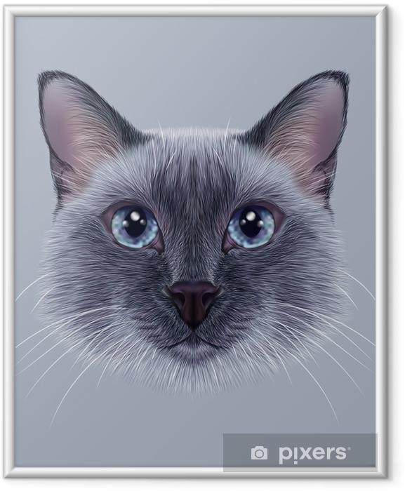 Plakát v rámu Ilustrační portrét thajského Cat. Hezký modrý bod Tradiční siamská kočka. - Zvířata