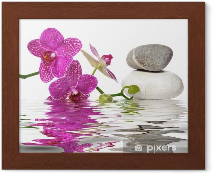 Poster en cadre Il vous suffit de belles orchidées - Bestsellers
