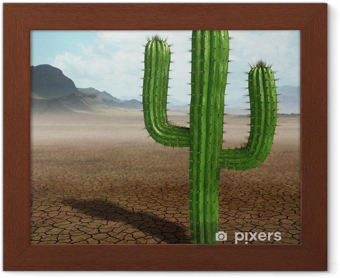 Poster en cadre Cactus dans le désert. - Désert
