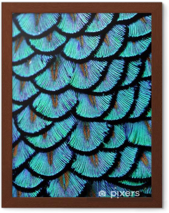 Çerçeveli Poster Mavi Tüyler - Hayvanlar