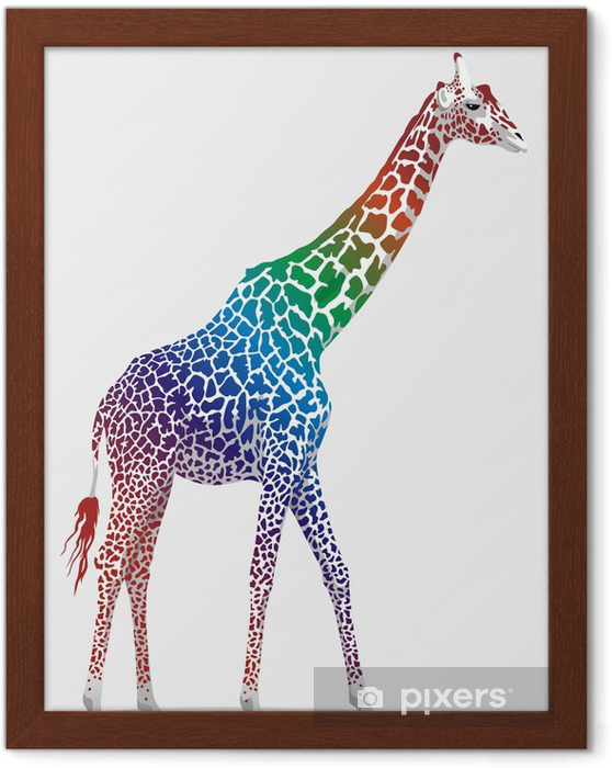 Ingelijste Poster Giraffe - Zoogdieren