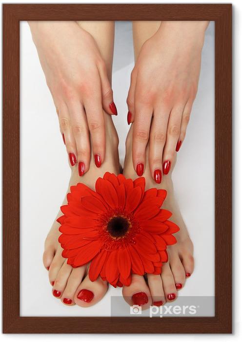 Plakat w ramie Czerwony manicure i pedicure z delikatnym herbera - Uroda i pielęgnacja ciała