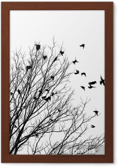 Çerçeveli Poster Uçan kuşlar -