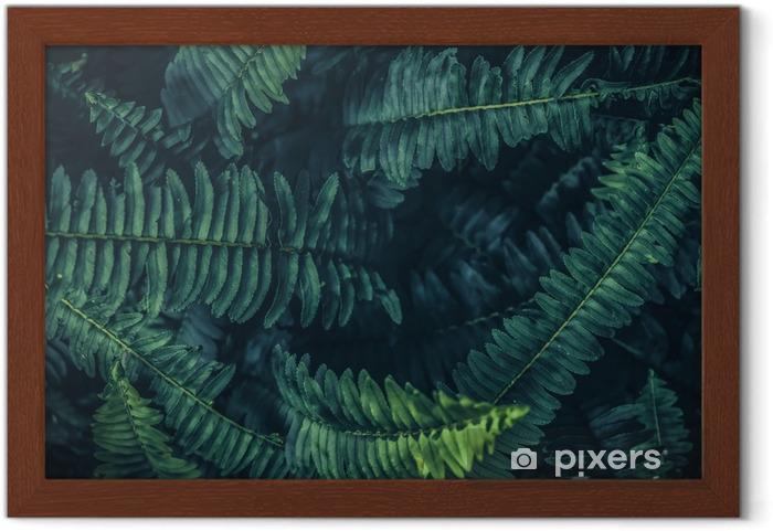 Ingelijste Poster Tropische bladeren achtergrond, groene achtergrondpatroon. - Bloemen en Planten