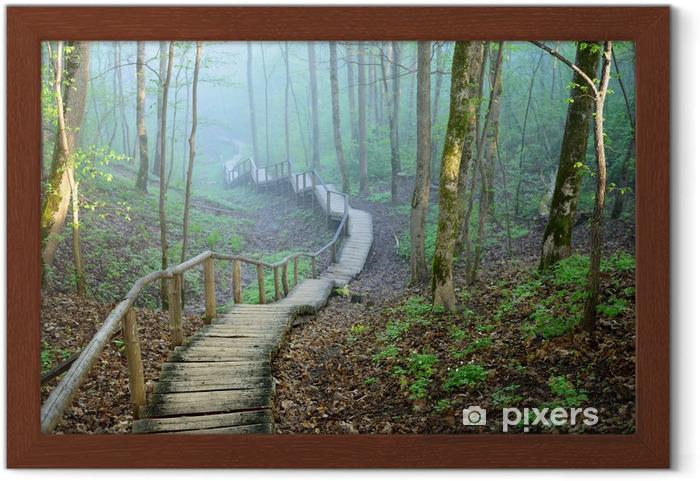 Póster Enmarcado Staiway en el bosque que desaparece en niebla fuerte - Temas