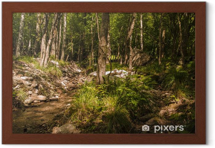 Bosco incantato cerca con google bosco bosco foreste paesaggi
