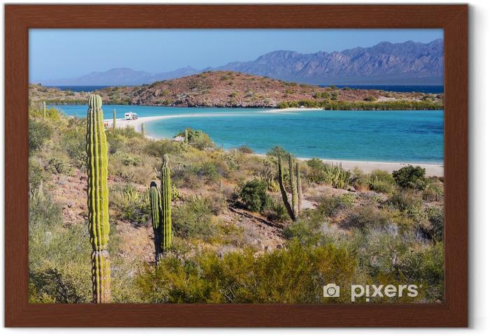 Póster Enmarcado Baja California - Naturaleza y zonas salvajes