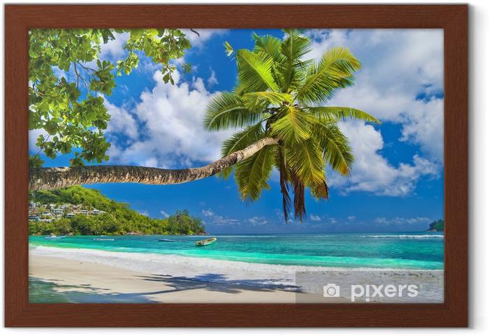 Poster en cadre Paysage tropical idyllique - les Seychelles - Thèmes