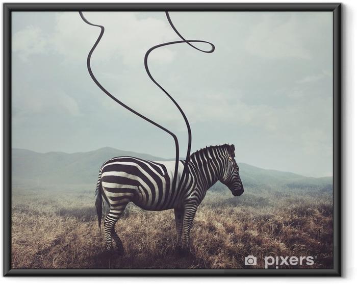 Póster com Moldura Zebra e listras - Animais