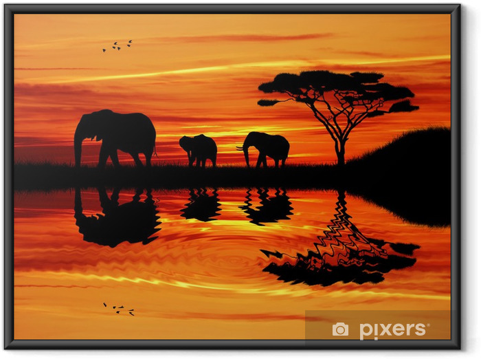 Gerahmtes Poster Elefanten Silhouette bei Sonnenuntergang - Elefanten