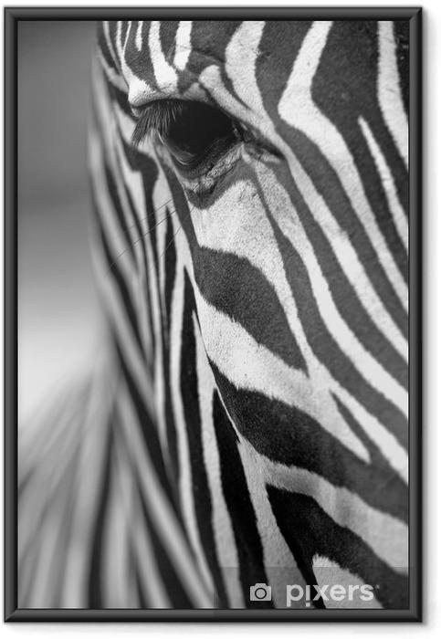 Plakat w ramie Monochromatyczny zebra tekstury skóry - Zwierzęta
