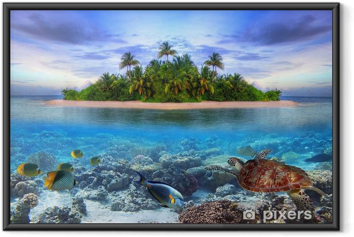 Plakat w ramie Morskie życie na tropikalnej wyspie Malediwów -