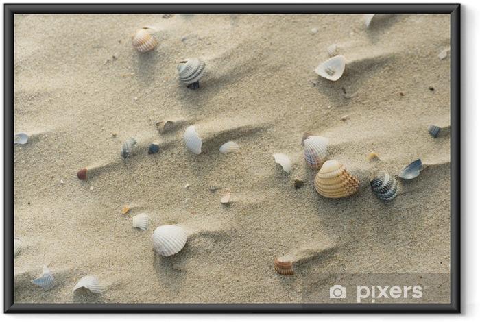 Ingelijste Poster Shells bij winderig strand - Vakantie