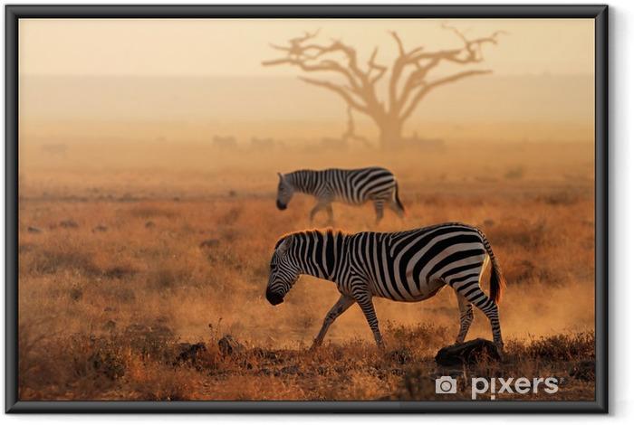 Póster Enmarcado La cebra en el polvo, el Parque Nacional de Amboseli - Temas