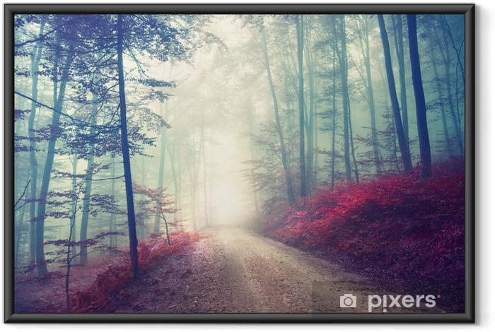 Poster en cadre Chemin magique dans la forêt - Forêt
