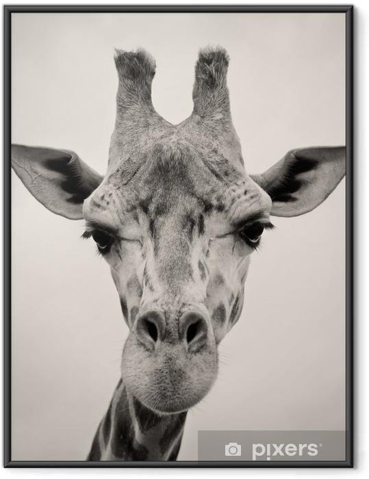 Çerçeveli Poster Bir Zürafalar Başkanı vintage sepya tonlu görüntü -