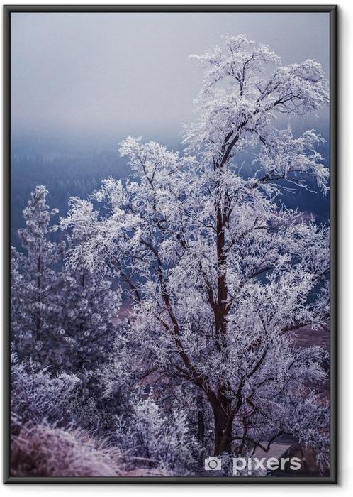 Plakat w ramie Zima i szron na drzewach w Spokane - Krajobrazy