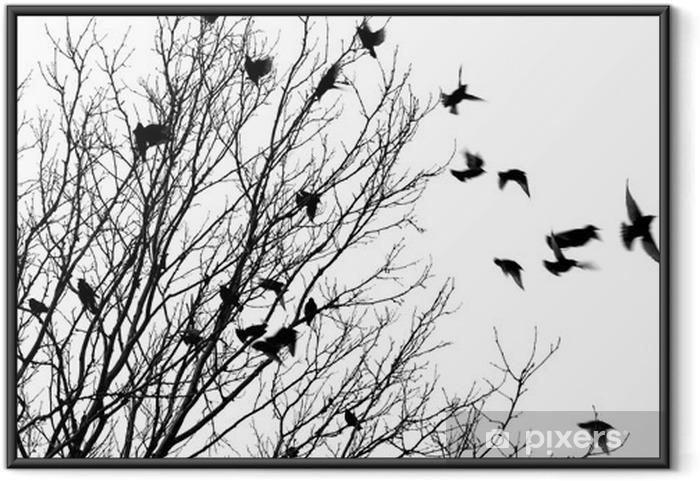 Póster Enmarcado Flying birds - Estilos