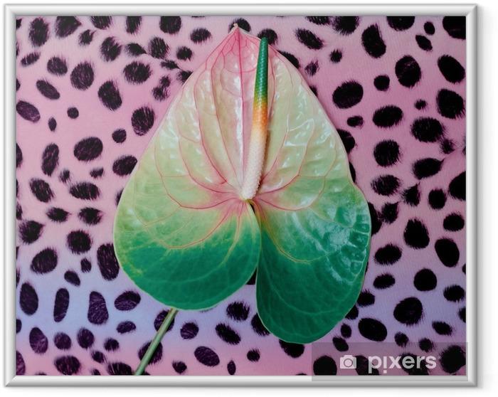 Póster Enmarcado La moda flor de la cala. Mínimo. Estampado de leopardo - Estilo de vida