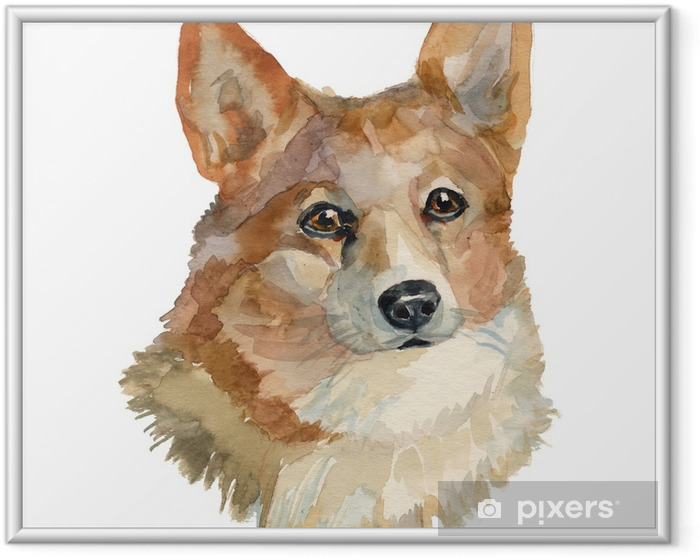 Plakat w ramie Pies pembroke welsh corgi - Zwierzęta