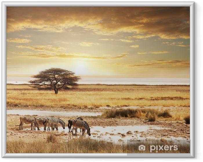 Plakat w ramie Safari - Tematy