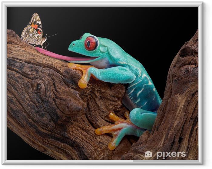 Plakat w ramie Żaba próbuje złapać motyla - Żaby