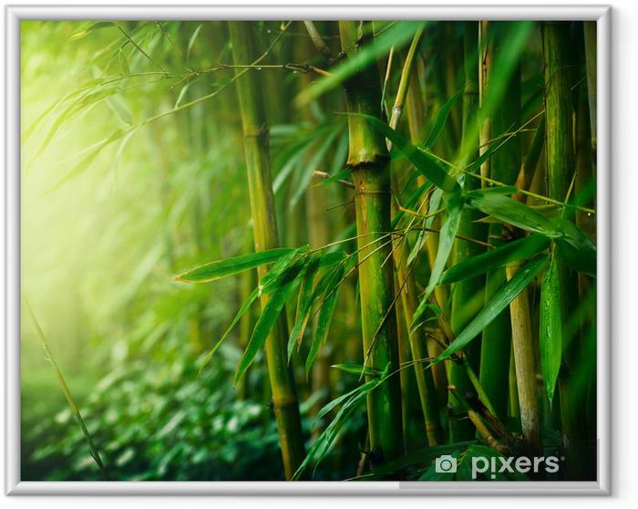 Plakat w ramie Bambus - Style