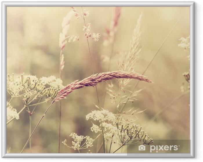 Ingelijste Poster Summer Meadow - Stijlen