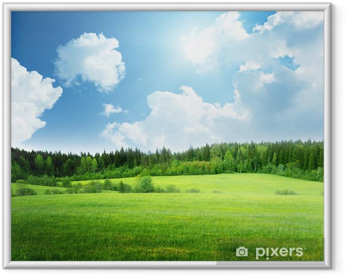 Ingelijste Poster Gebied van gras en perfecte hemel - Thema's