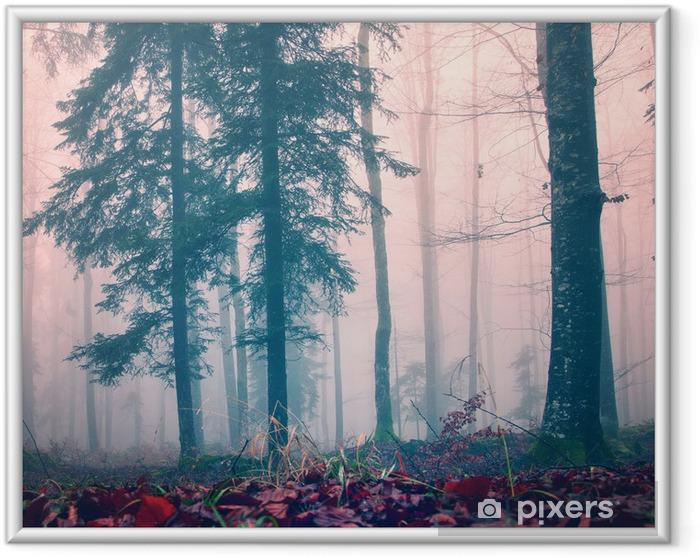 Plakat w ramie Zamglone lasy czerwony kolor - Pory roku