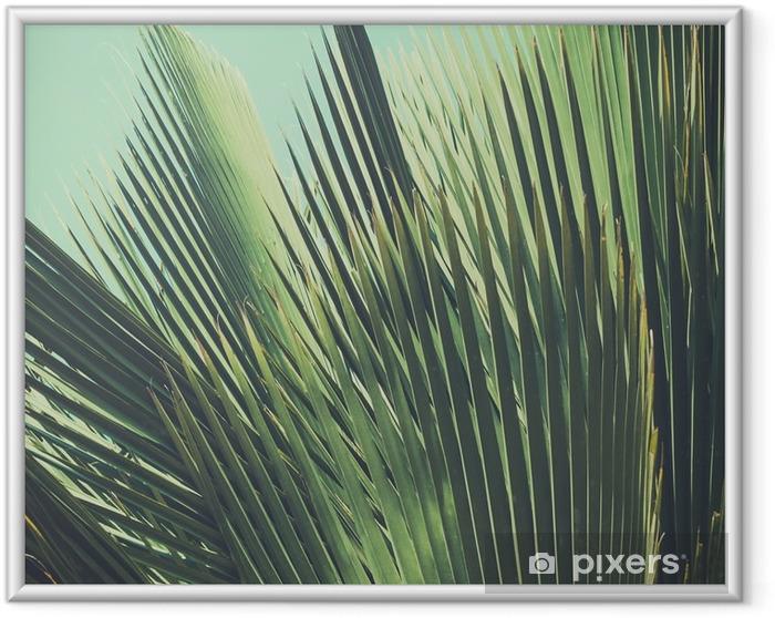Poster i Ram Abstrakt tropisk vintage bakgrund. Palmblad i solljus. - Växter & blommor
