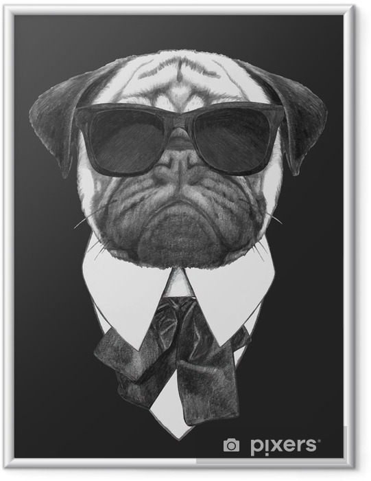 Póster Enmarcado Hand drawn fashion Illustration of Pug Dog with sunglasses. Vector isolated elements. - Carlinos