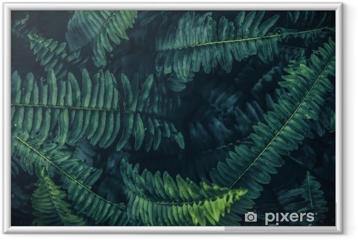 Plakat w ramie Tropikalny liść tło, zielone tło wzór. - Rośliny i kwiaty