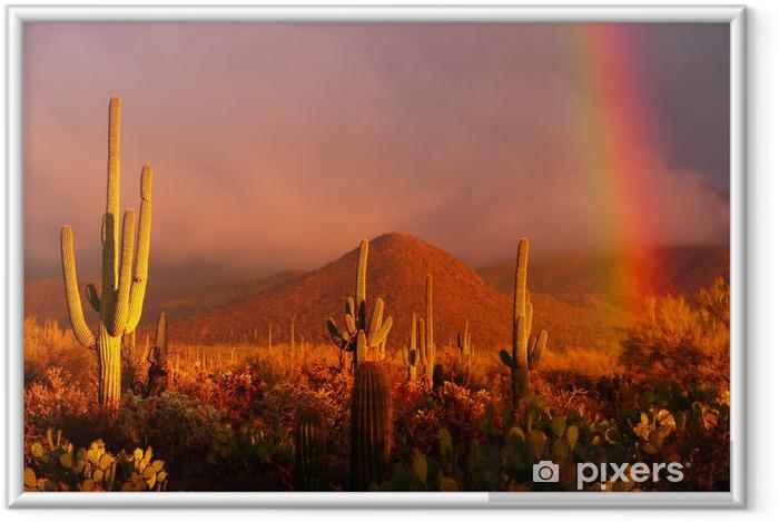 Poster i Ram Rainbow solnedgång på Saguaro National Park, Arizona, USA - Vildmark