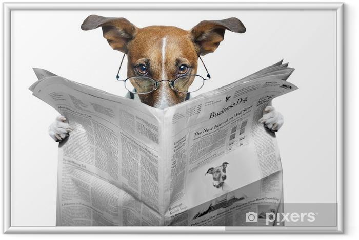 Poster en cadre Chien lisant un journal - Thèmes