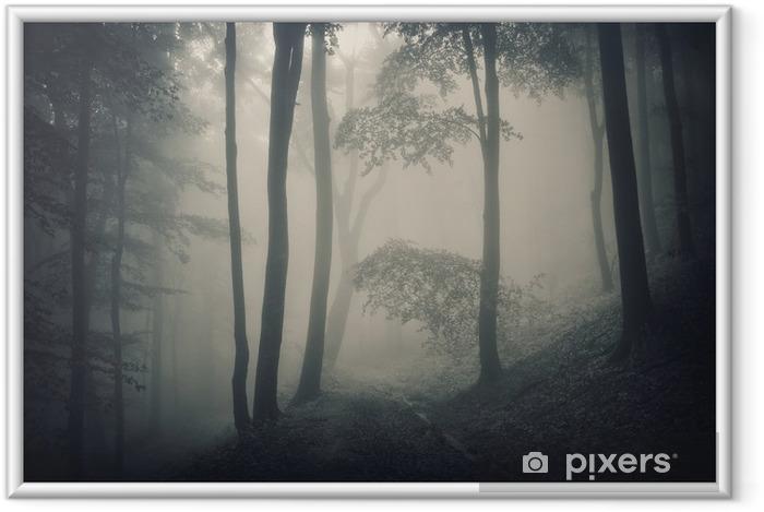 Plakat w ramie Sylwetka drzew w lesie z mgły - Tematy