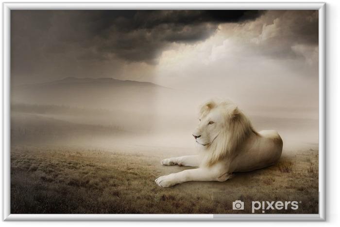 Plakat w ramie Biały lew na zachodzie słońca -