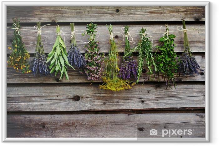 Ingelijste Poster Kruiden drogen op de houten schuur in de tuin - Kruiden