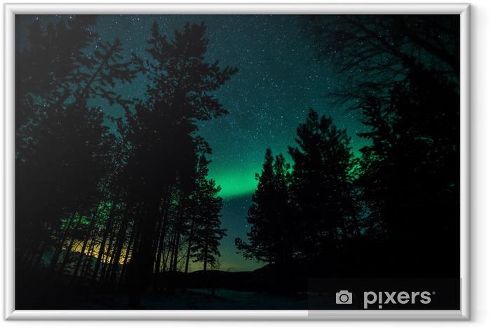 Poster en cadre Aurores boréales au-dessus des arbres en Suède - Thèmes