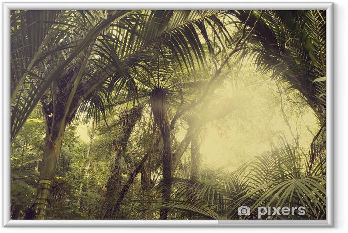 Poster en cadre Forest tropical - Thèmes