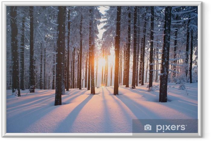 Ingelijste Poster Winterse zonsondergang in het bos -