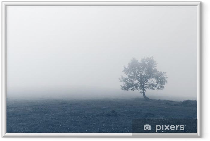 Ingelijste Poster Eenzame boom met mist - Landschappen
