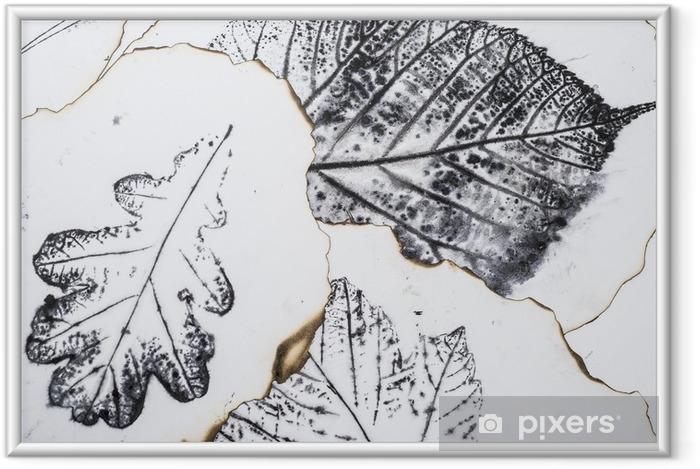Çerçeveli Poster Sanatsal resim - yaprakların izleri - Grafik - monotype - Grafik kaynakları