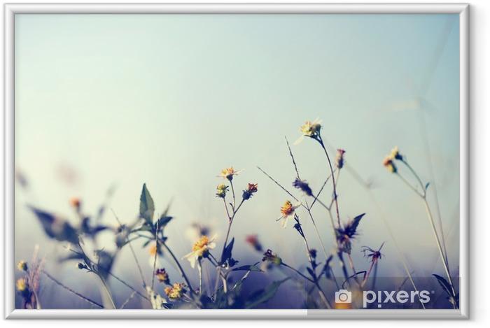 Ingelijste Poster Uitstekende foto van de natuur achtergrond met wilde bloemen en planten - Bloemen en Planten