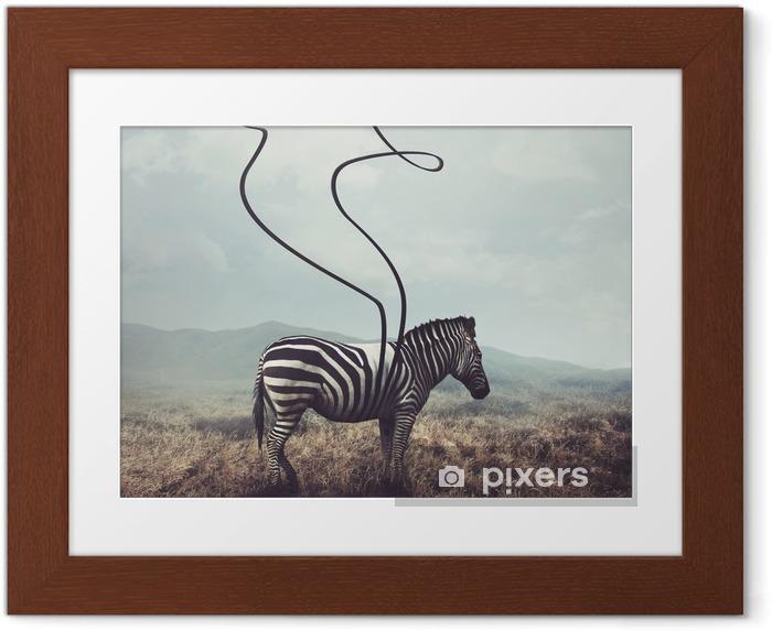 Gerahmtes Poster Zebra und Streifen - Tiere