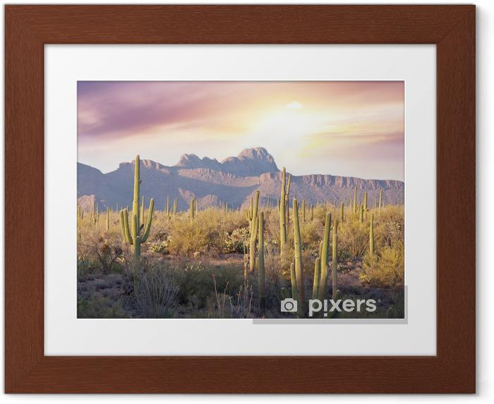 Poster i Ram Saguaro park - Natur och vildmark