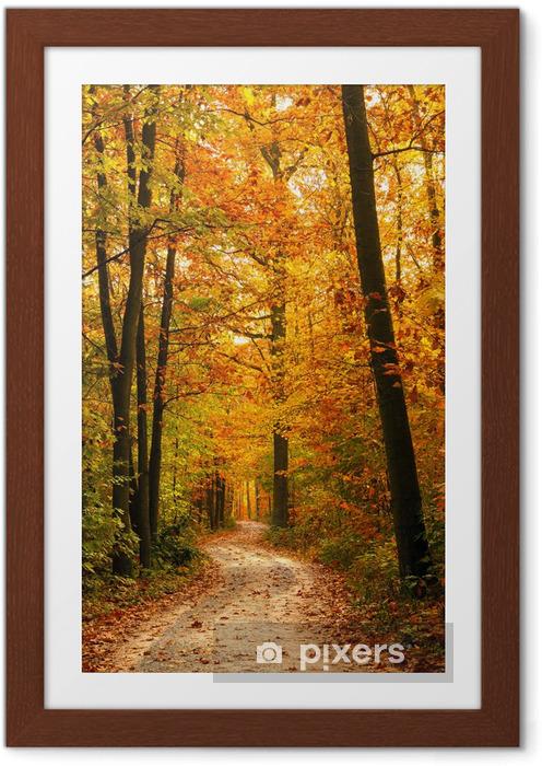 Plakat w ramie Jesienny las - Tematy
