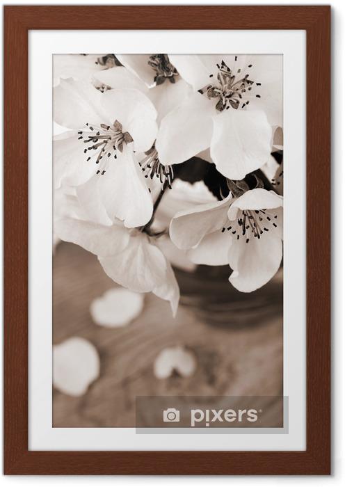 Plakat w ramie Kwiat jabłoni, przetwarzane w kolorze sepii rocznika - Jabłonie