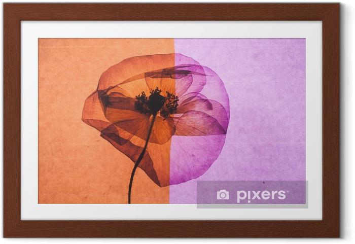 Plakat w ramie Nice flower - Rośliny i kwiaty